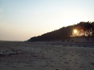 Places in India To Travel on a Low Budget-Digha
